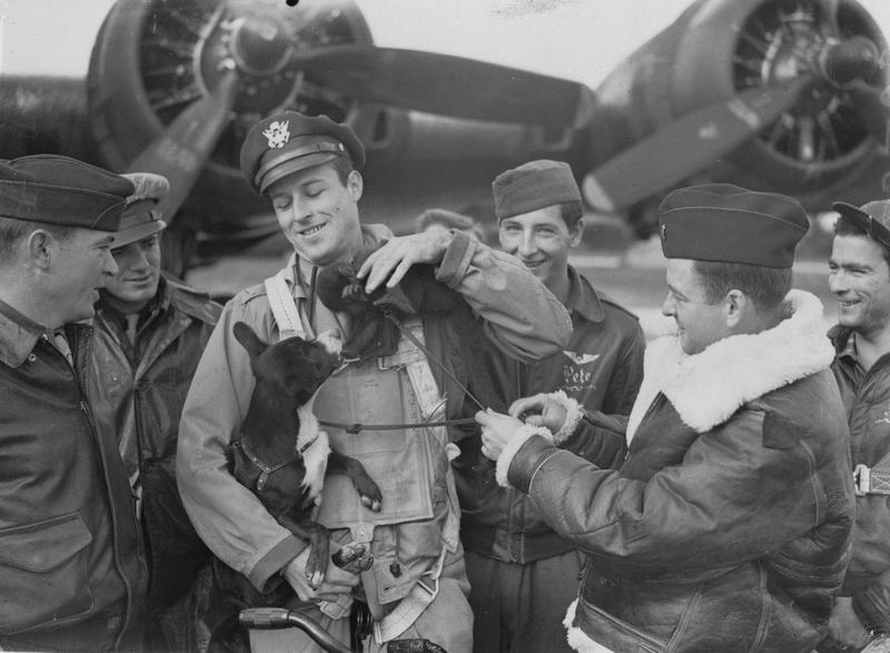 A bomber crew of the 390th Bomb Group pets their mascots