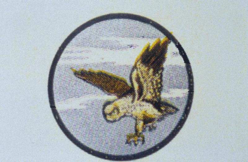The insignia of the 7th Bomb Squadron, 34th Bomb Group.