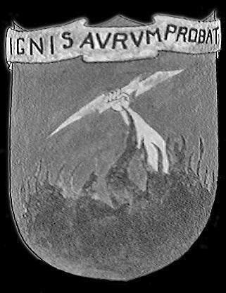 416th Bombardment Group(light) WW2 Unofficial emblem , found online , seeking colors for this emblem.