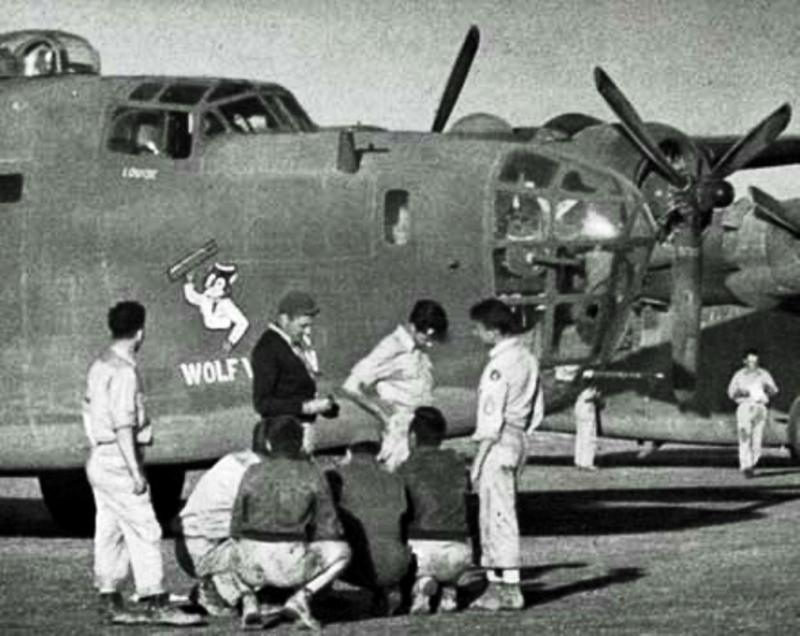 The B-24D Liberator  42-40775  Wolf Wagon in the 8th AF,  the 389th BG, and the 565th BS,  flew on the Ploesti oil refinery raid piloted by Kenneth H. Matson, returning safely to Libya.  1 Aug 1943                                                                                                                                                                                                                                                        Wolf Wagon was shot down by AA on a  mission to Wiener-Neustadt, while being flown by the Kenneth Matson crew. The 389th BG was at that time on TDY in Tunisia in support of the invasion of Italy.   6 KIA   -  4 POW.       MACR 5859.