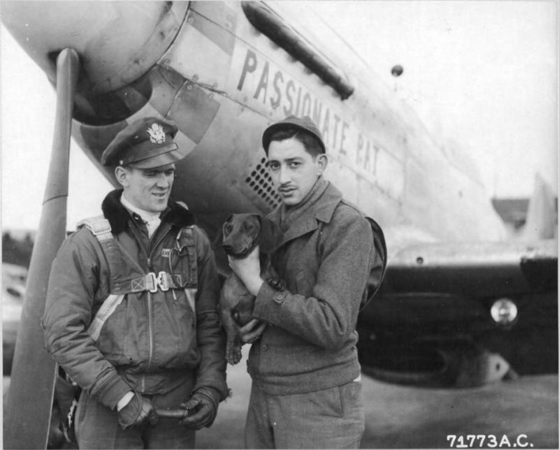 Capt Lowell V Andrew and P-51D 44-14290 'Passionate Pat' 383FS, 364FG, 8AF.   NARA Ref 342-FH-3A12348-71773AC.