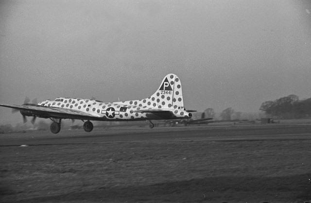 42-3441, THE SPOTTED COW